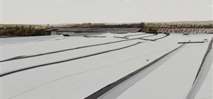 How to Maintain Your TPO Roof